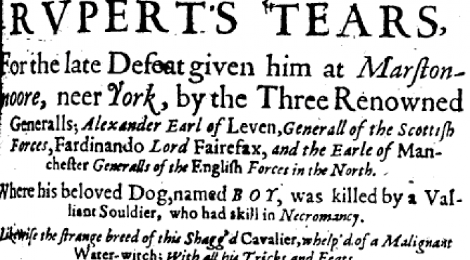 Some original Fake News, in which a beloved dog named Boy is killed by a Necromancer